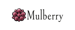 What is Mulberry mail